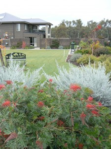 Getting the best out of australian native plants roy for Landscaping courses adelaide
